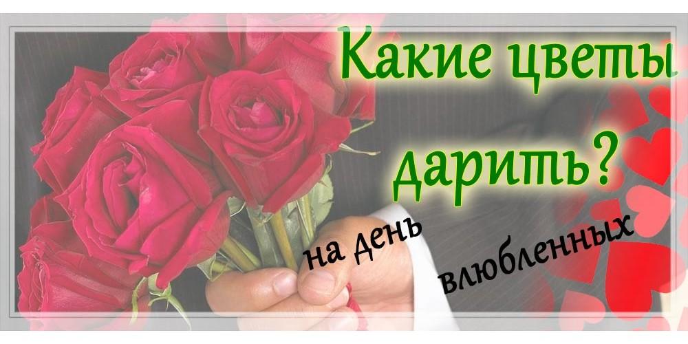 Какие цветы дарить на 14 февраля?