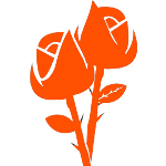 Найди свой любимый тип цветов - а мы сделаем букет!!!