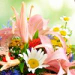 Цветы без повода здесь! выбирай!