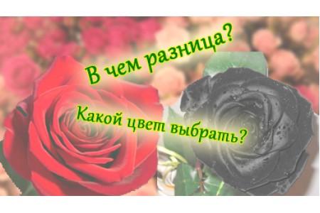 Какого цвета дарить цветы?