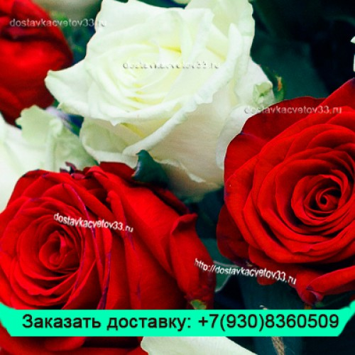 """Букет из белых и бордовых роз (70 см) """"Престиж"""""""