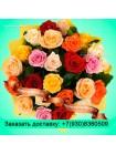 25 роз разноцветная (40 см)