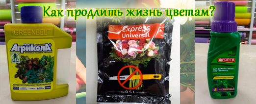 Подкормка для цветов, которая есть в нашем магазине. Она поможет продлить жизнь срезанным цветам.