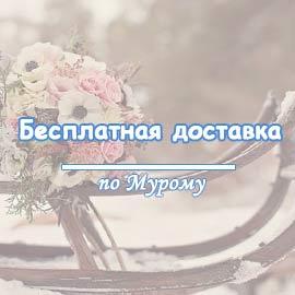image-banner